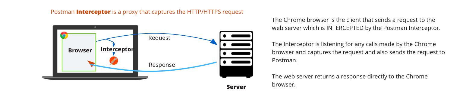 Client proxy settings in Postman - Postman Blog